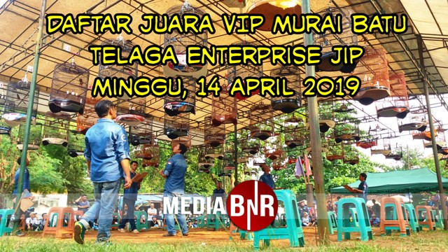 Daftar Juara VIP Murai Batu Telaga Enterprise JIP (14/04/2019)