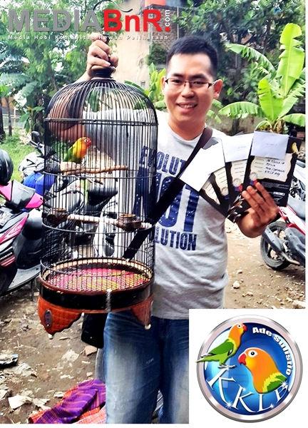 Lovebird REVA milik KKLB Raih Quatrick dan Menjadi Bintang Lapangan