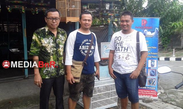Kios Perkutut Rakyat Semarang, Hadirkan Solusi Pemula Yang Hobi Perkutut