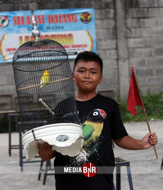 Woyo Woyo Unjuk Gigi, Roro, Achilles, Godzila Pemanasan Menuju Piala Candi Borobudur Cup