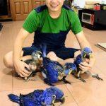 Andy Hoo Tancapkan Prestasi di Bandung Lautan Api Cup II