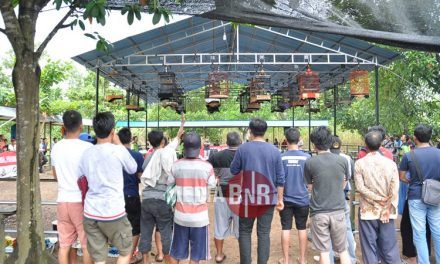 Memperingati Hut RI Ke 73, Dukung Pileg Dan Pilpres 2019 Damai