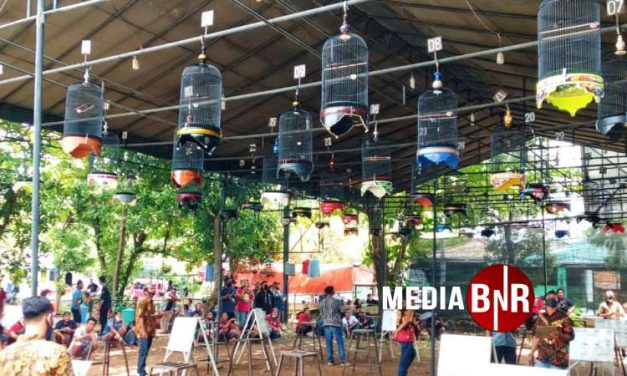 Sniper Stabil, Bintang Meteor Nyeri – Komunitas Ciblek Nusantara Sambangi 1st Anniversary Ciblek Pekalongan Bersatu