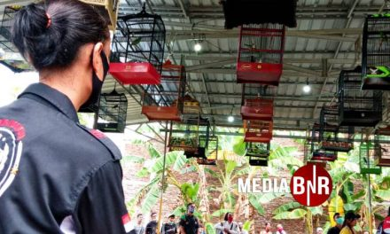 Pindang Serani Come Back-Aliando, Narzih & Tsunami Rajai IJSM CUP I