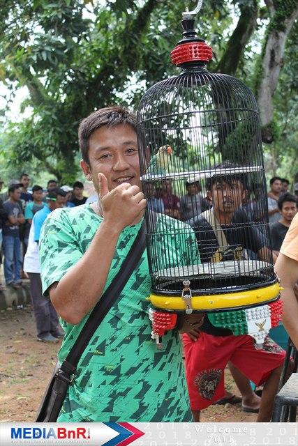 Bambang AB Galeh BF Pekalongan gudangnya lovebird & murai batu jawara