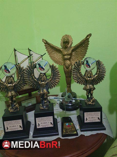 Beberapa Koleksi Piala Murai Borneo BB