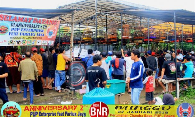 RR Junior Stabil Borong Juara, Gelaran Lomba Meriah Banjir Doorprize Mewah