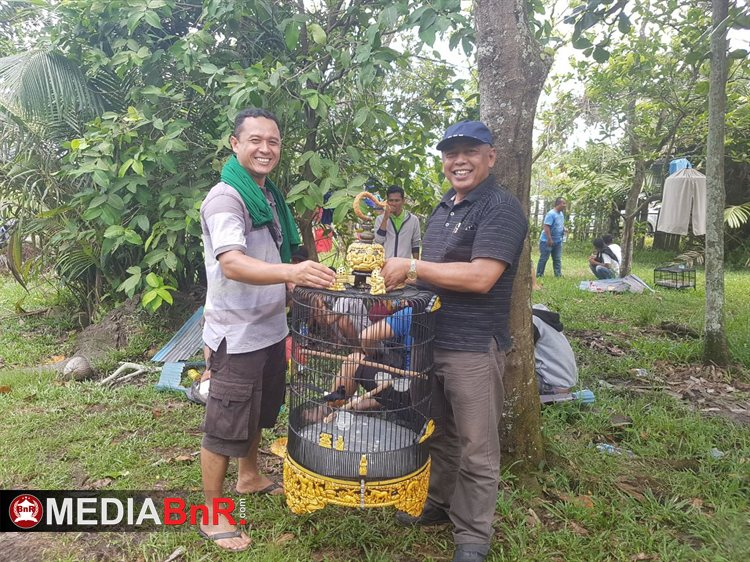 Murai Borneo BB Drs Haryono, MM Seruyan Kalteng  di Tahun 2017 Sabet 75 Kali Podium Pertama