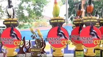 Bintang Kicau Cup, Aksi Panglima Sumatra Pasca Mabung