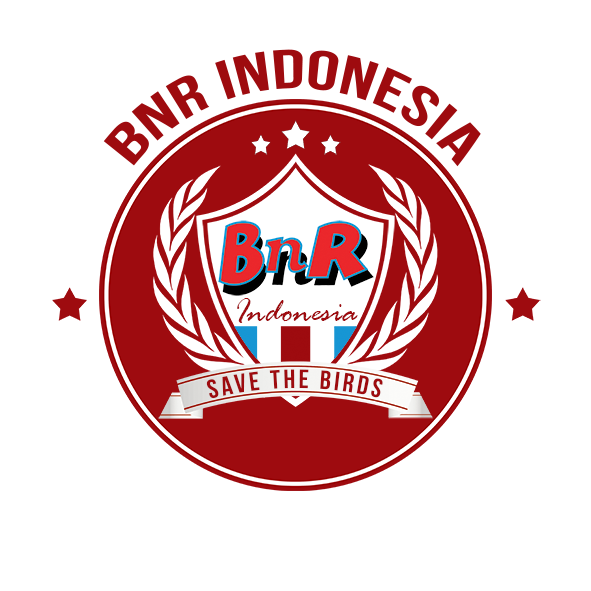 BnR INDONESIA kecil