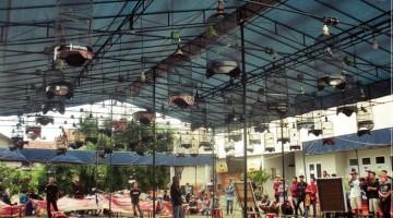 BnR Pasar Segar Tempat Kumpul Lovebird Mania