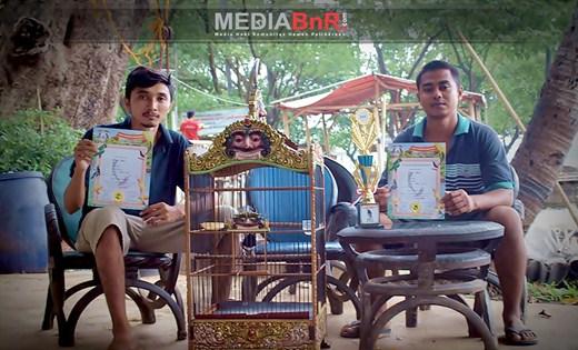 Bobo Boy Masih Stabil, Bulan Sabit Nyaris Double Winner