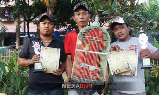 Jahanam, Lovebird Muda Performa juara