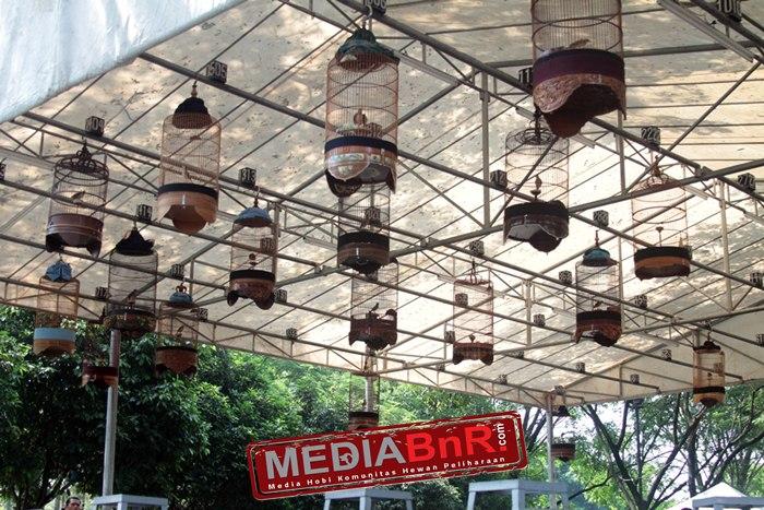Citra Raya Award II #1 – Dibanjiri Para Komunitas, Jupiter Cetak Nyeri