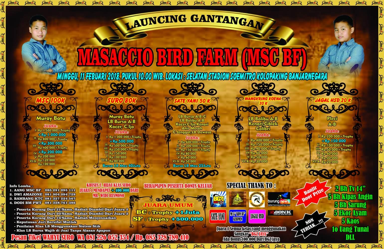 Brosur LAUNCHING GANTANGAN MASACCIO BF Banjarnegara, 11 Februari
