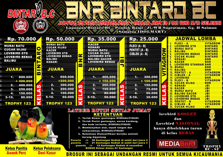 Brosur lomba burung BNR BINTARO BC