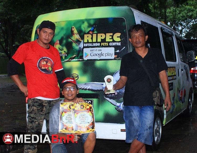 CH Jack Pot Gaco Paul Intan Klaten - Stabil di Jalur Juara