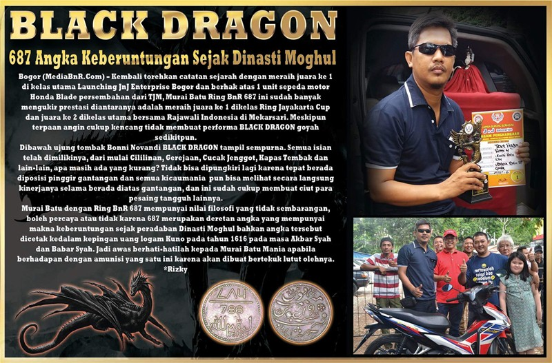 Murai Batu Black Dragon