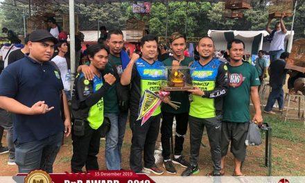 Cucak Hijau Ketuyung Sabet Double Winner