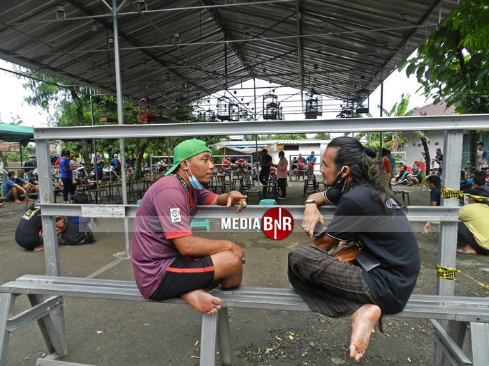 Diisukan Tutup, Independent Prasetya Diserbu Murai Mania – Jalesveva Jr Raih Juara