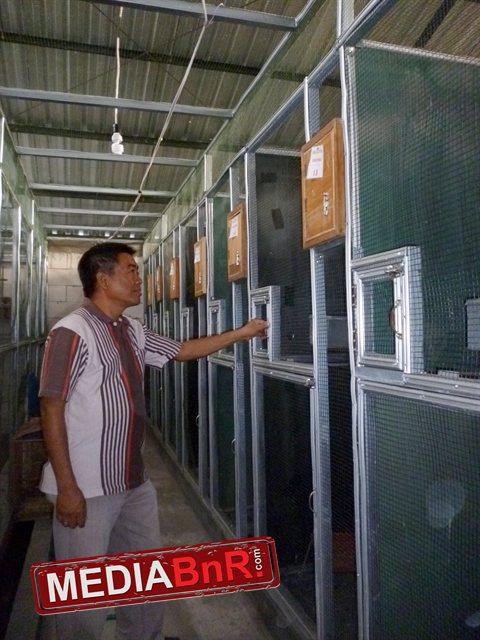 Deret Petak Kandang Dalam Blok Dilengkapi CCTV