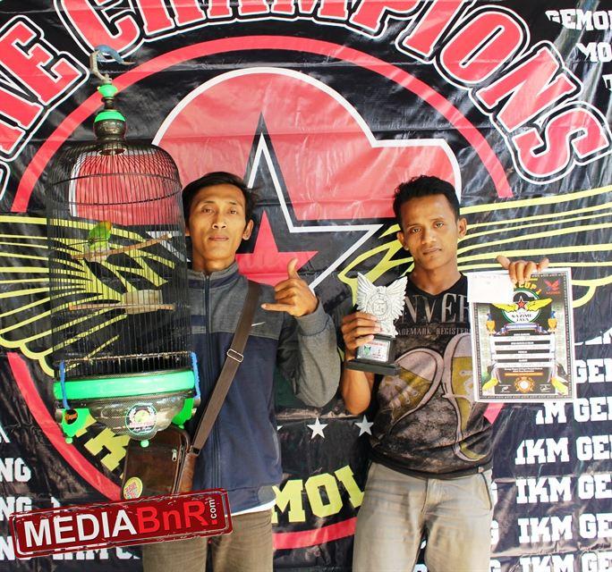 Dewi Padi SF. Dewi Padi Juara 1 Love Bird Sazime Jaya B