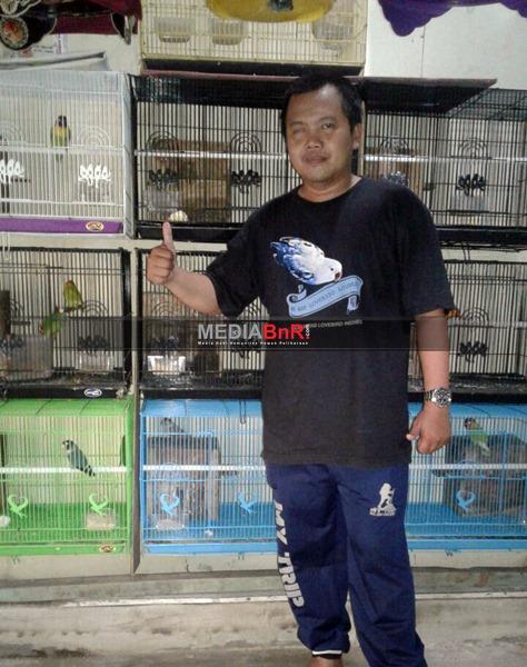 Budidaya Love Bird Ring KLI RDD Maju Pesat