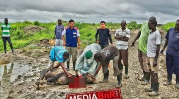 Di hari raya idul adha BnR Indonesia berbagi kurban