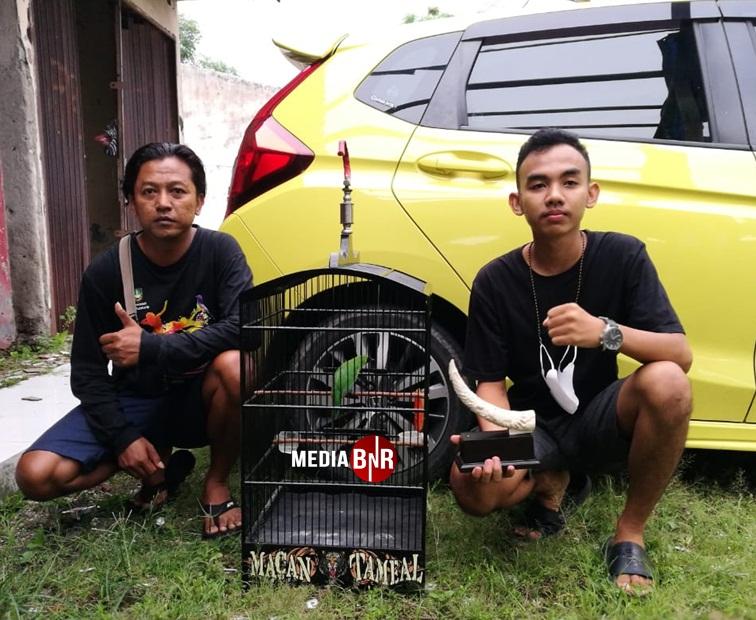 Dimas Pradana (kanan) - Cucak Hijau Triad tampil mewah raih Juara 1