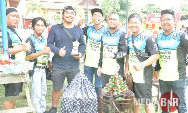 Rekor Harga Seekor Murai Borneo Di Nusantara