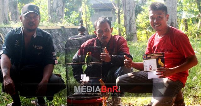 Kicau Mania Mudik ke Kampung Halaman