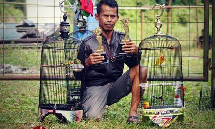Sangkar Alfa Jaya Bagi-bagi Door Prize