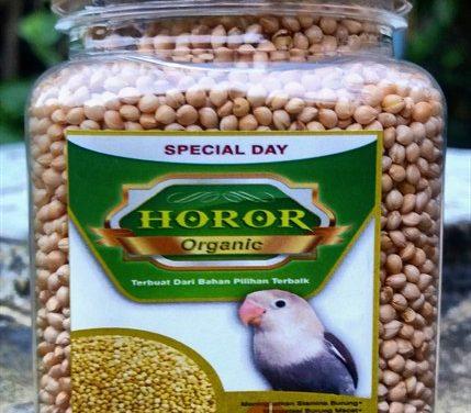 Pakan Horor Bikin Love Bird Tampil Serem Digantangan