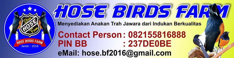 Hose Bird Farm jambi