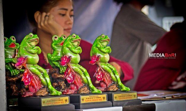 DAFTAR JUARA OPENING BINTANG KODOK – GANTANGAN KLAKER BC, MALANG (17/10/2021)