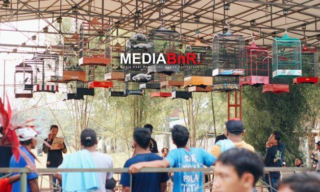 Daftar Juara Rabu Ceria Kodok BC – Gantangan Klabang Tori, Malang (20/10/21)