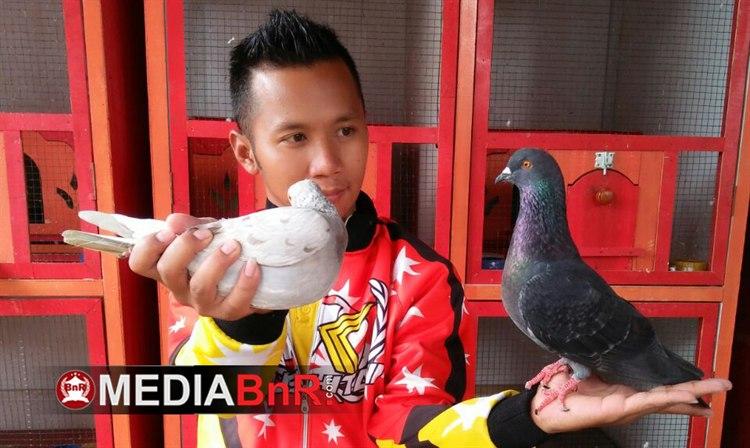 Advokat Muda Kushitani Team Siapkan Alcatras Adik Jayabaya
