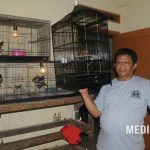 IRFAN BP BF : Cetak Trah Berkwalitas Dari Kandang Ternak Minimalis