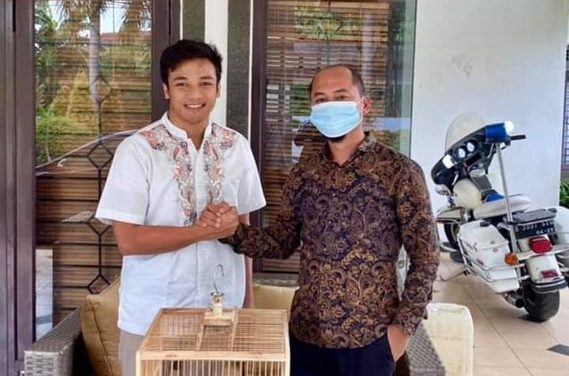 "JGC BIRD FARM – Boyong Anakan Murai Batu Legend ""Pelor Mas"", Erwan JGC Resmi Jadi Kolektor Trah Burung Nasional"