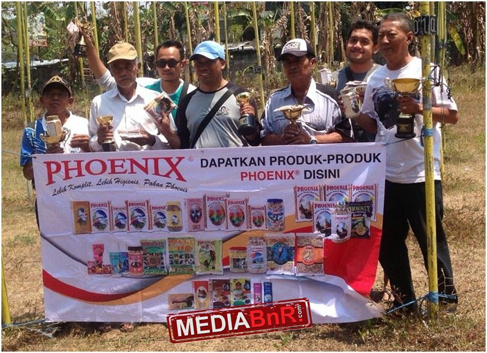 Team Mic BF Semarang Sapu Bersih Kelas Dewasa di Phoenix Cup Yogyakarta