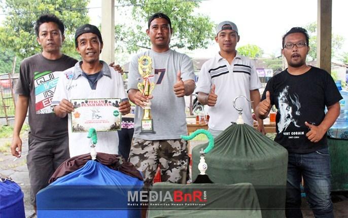 Jack Pot Murai Batu Besutan Hendro Raih Juara 1 di Kelas VIP