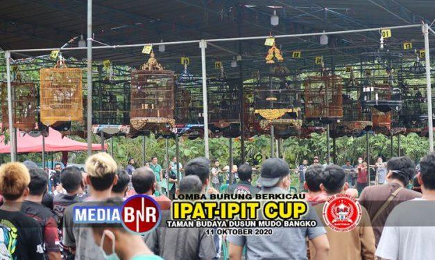Tembus 1.170 Peserta Murai Batu Nacha Dan Kacer Naruto Sabet Sepeda Motor Di Piala Ipat Ipit Cup