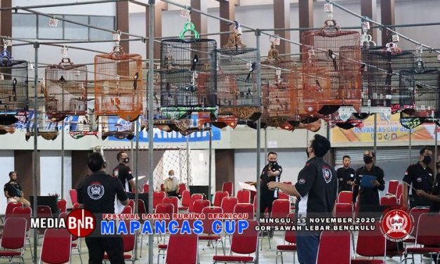 Tembus 1.020 Peserta, Lomba BnR Indoor Non Teriak Mapancas Cup Berjalan Sukses