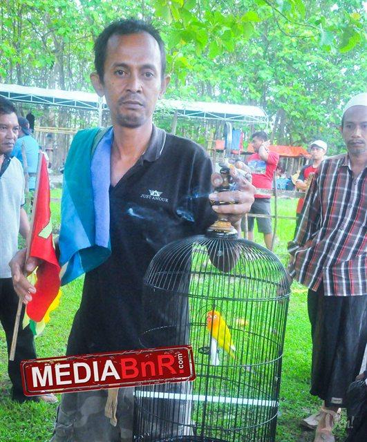 Jampang mengawali kemenangan juara 1 dikelas lovebird Paud A