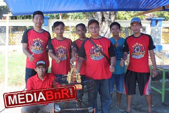 Jarum jagoan Mr. Bayu Ceplix  dari Indramayu, menang mutlak di kelas murai batu ring BnR Food
