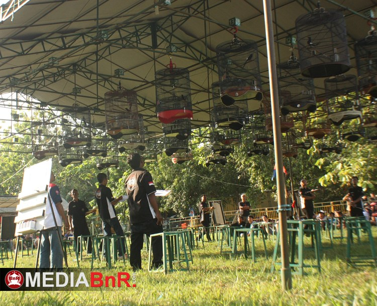 Luar Biasa…Buktikan Mampu Tanpa Teriak  di Even Besar Cirebon
