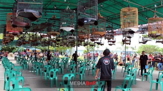 Juri dan Kicaumania Festival Borneo Berkicau