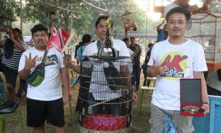 Prestasinya Kian Melejit, Kacer NK Curi Perhatian di Lomba DKI Cup dan Lanjut ke Piala Cisadane PBI Tangerang