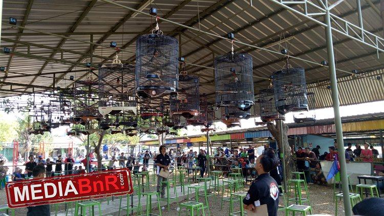 Gebyar Idul Adha TPC – MB Robin Hood Terbaik, Kongkow BC Borong Juara