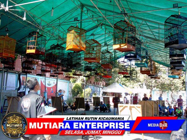 Mutiara Enterprise Jadi Tempat Favorit Ijo Mania Jakarta & Bekasi…